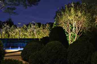 Garden Lighting Maintenance
