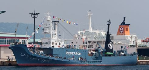Sea Shepherd, Japanese Whalers Clash For Third Time This Season