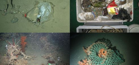 International Researchers Find Deep Ocean Waters Littered With Human Trash