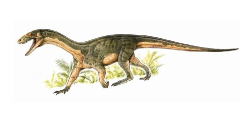The oldest known dinosaur relative looks a lot like a freaky crocodile