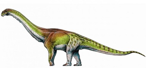 Meet Patagotitan– the biggest dinosaur ever known