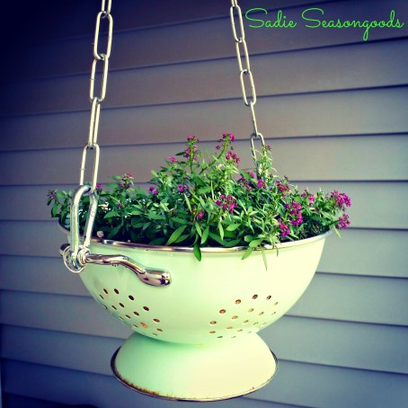 Colander-Planter-with-WM