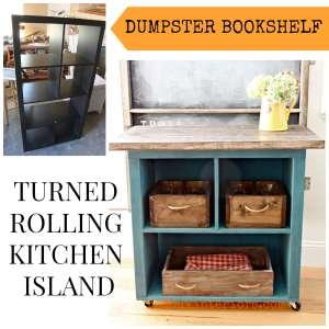 Dumpster Bookshelf Turned Rolling Island