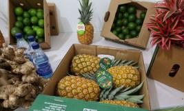 Producción piñas, limones, jengibre
