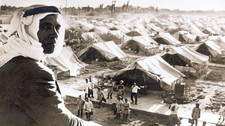 Palestine questions