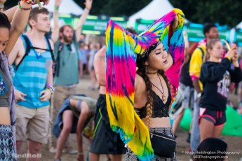 Electric Forest Sunday Photo 54