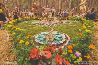 Electric Forest Sunday Photo 9