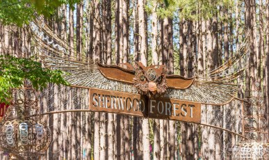 Electric Forest Weekend 1 Saturday Photo 02