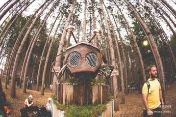 Electric Forest Weekend 1 Sunday Photo 060