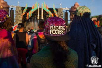 Electric Forest 2018 Weekend 1 - Photo 125