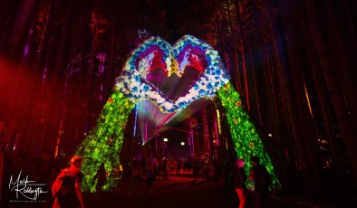 Electric Forest Music Festival 2019 Photo 105