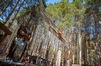Electric Forest Music Festival 2019 Photo 8