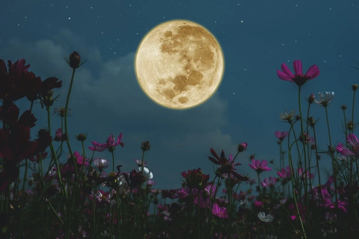 Does The Moon Affect Our Sleep?