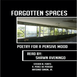 Forgotten Spaces Audio Book Cover