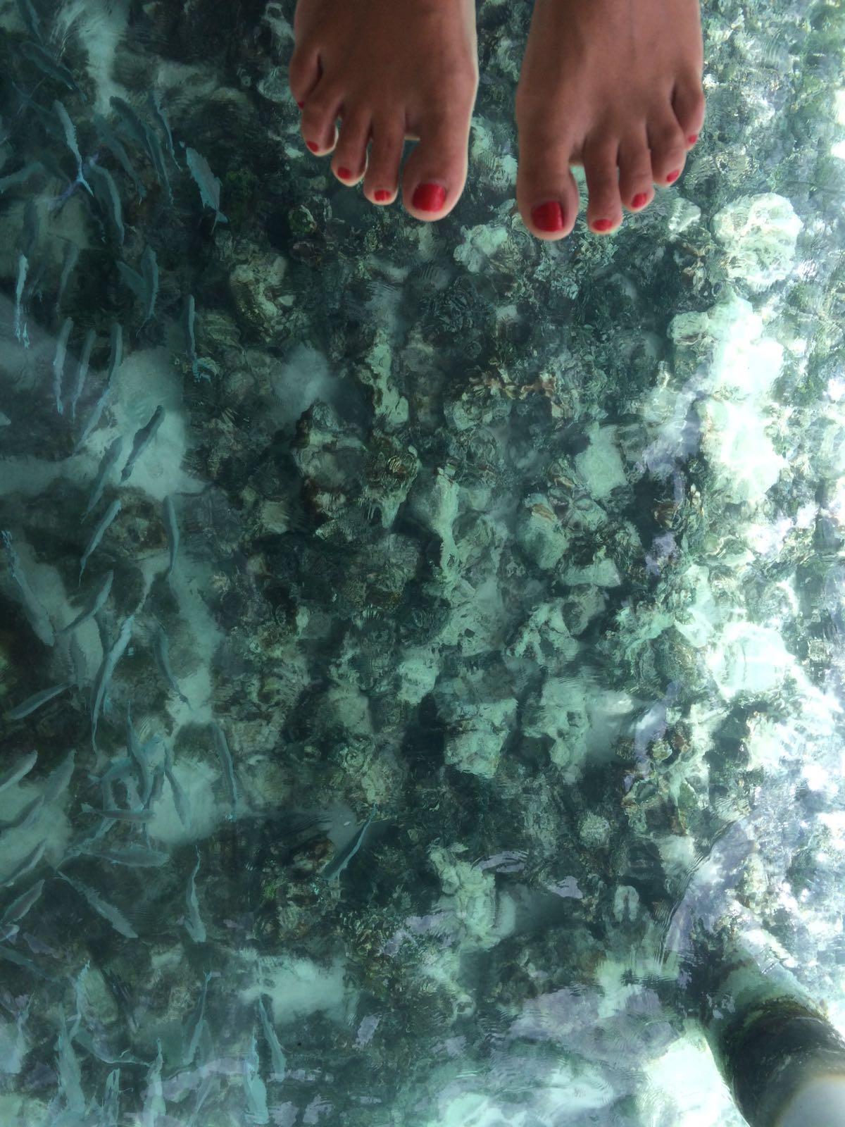 Fisch-Spa mal anders: Coole Sache - der Glasboden in den Spa Villen