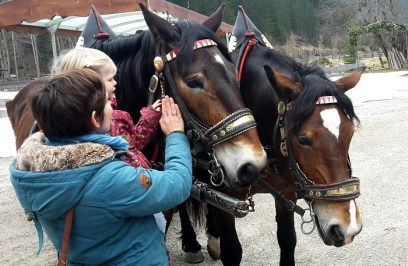 Regelmäßig gibt es vom Dachsteinkönig aus Kutschfahrten - im Winter mit Pferdeschlitten
