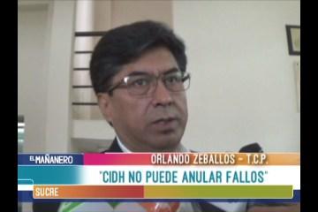 CIDH NO PUEDE ANULAR FALLOS