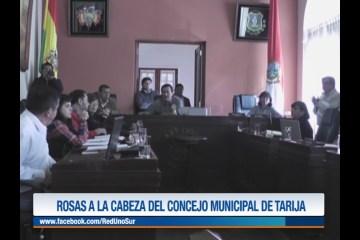 ROSAS A LA CABEZA DEL CONCEJO MUNICIPAL DE TARIJA