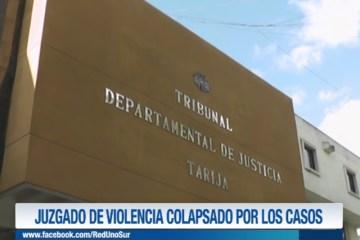 JUZGADO DE VIOLENCIA COLAPSADO POR LOS CASOS