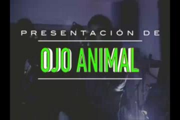 ESPECTÁCULO: PRESENTACIÓN DE OJO ANIMAL