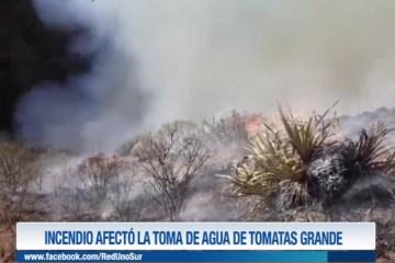 INCENDIO AFECTO LA TOMA DE AGUA DE TOMATAS GRANDE