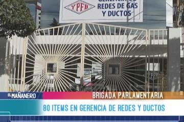 80 ITEMS EN GERENCIA DE REDES Y DUCTOS