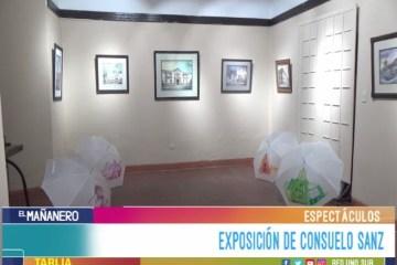 ESPECTÁCULO: EXPOSICIÓN DE CONSUELO SANZ
