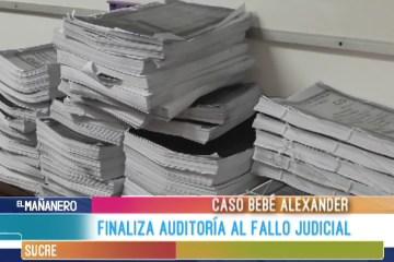 FINALIZA AUDITORIA AL FALLO JUDICIAL EN EL CASO BEBÉ ALEXANDER