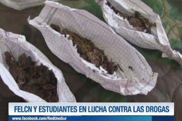 FELCN Y ESTUDIANTES EN LUCHA CONTRA LAS DROGAS