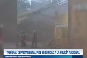 TRIBUNAL DEPARTAMENTAL PIDE SEGURIDAD A LA POLICÍA NACIONAL