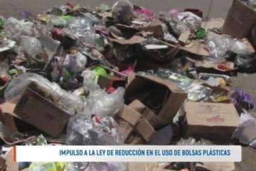 IMPULSO A LA LEY DE REDUCCIÓN EN EL USO DE BOLSAS PLÁSTICAS