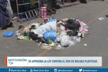 SE APRUEBA LA LEY CONTRA EL USO DE BOLSAS DE PLÁSTICO