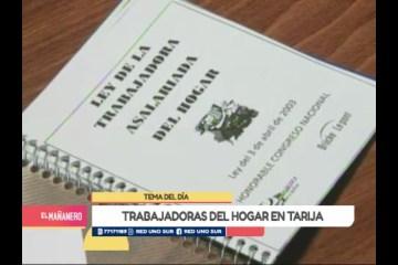 TEMA DEL DÍA: EL TRABAJO ASALARIADO DEL HOGAR