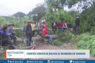 COMITÉS CÍVICOS SE REUNIRÁN EN TARIQUÍA