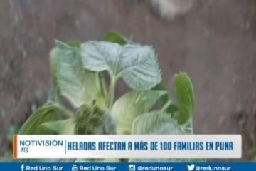 HELADAS AFECTAN A MÁS DE 100 FAMILIAS EN PUNA