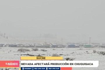 NEVADA AFECTARÁ PRODUCCIÓN EN CHUQUISACA