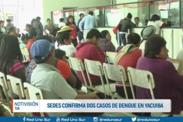 SEDES CONFIRMA DOS CASOS DE DENGUE EN YACUIBA