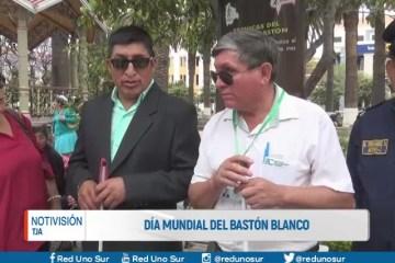 DÍA MUNDIAL INTERNACIONAL DEL BASTÓN BLANCO