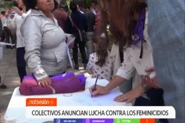 COLECTIVOS ANUNCIAN LUCHA CONTRA LOS FEMINICIDIOS
