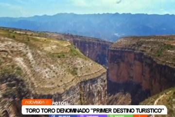 """TORO TORO DENOMINADO """"PRIMER DESTINO TURÍSTICO"""""""