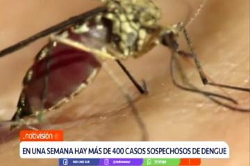 EN UNA SEMANA SE REGISTRARON MÁS DE 400 CASOS SOSPECHOSOS DE DENGUE