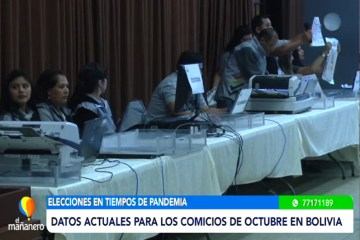 DATOS ACTUALES PARA LOS COMICIOS DE OCTUBRE 2020 EN BOLIVIA