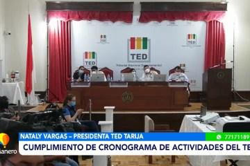 CUMPLIMIENTO DE CRONOGRAMA DE ACTIVIDADES DEL TED