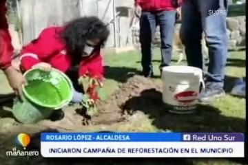 POSINOTICIA: INICIARON CAMPAÑA DE REFORESTACIÓN EN EL MUNICIPIO