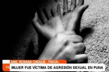 MUJER FUE VÍCTIMA DE AGRESIÓN SEXUAL EN PUNA