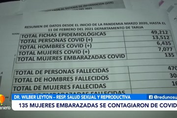 NO SE REGISTRARON CIFRAS ALTAS DE EMBARAZADAS CON COVID