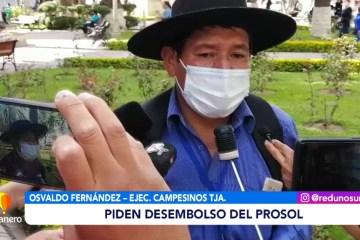 PIDEN EL DESEMBOLSO DEL PROSOL