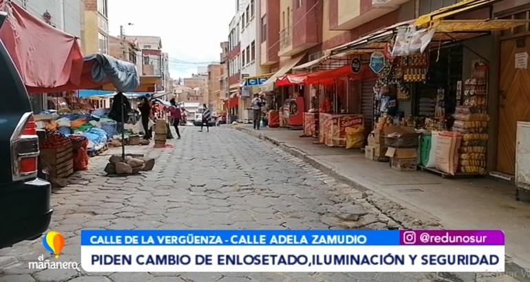 PIDEN CAMBIO DE ENLOSETADO, ILUMINACIÓN Y SEGURIDAD EN LA C. ADELA ZAMUDIO