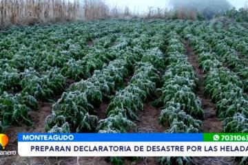 PREPARAN DECLARATORIA DE DESASTRE POR LAS HELADAS