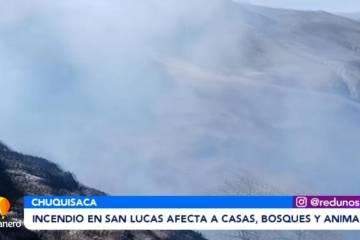 INCENDIOS EN SAN LUCAS AFECTA A CASAS, BOQUES Y ANIMALES